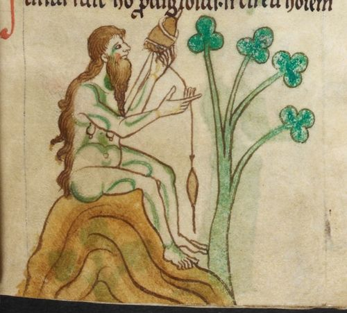 Royal MS 13 B VII f. 19r detail