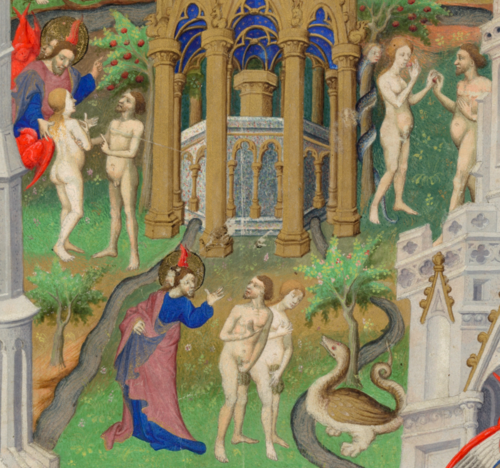 Add MS 18850 f14r detail 1