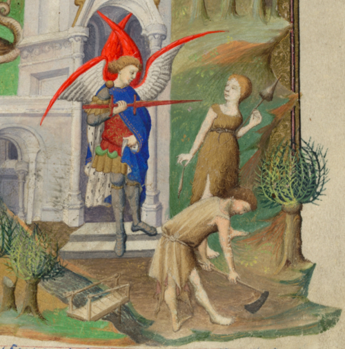 Add MS 18850 f 14r detail 2