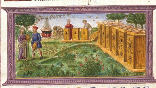 Kings MS 24, f 47v detail