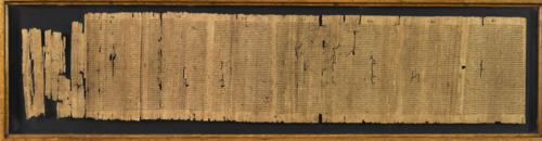 Papyrus_131_f001bv