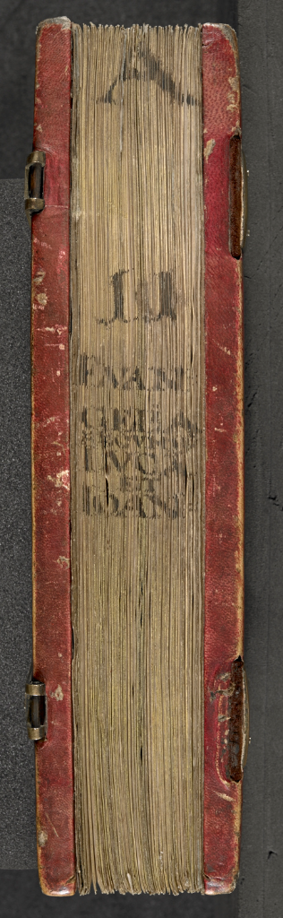 The fore-edge of a Gospel-book, showing an added inscription of the manuscript's title.